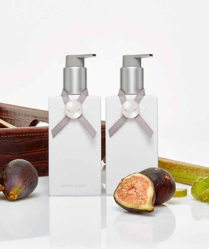 Fig & Rhubarb Hand Wash & Hand Lotion set